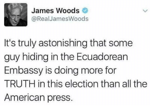 Memes, American, and Astonishing: James Woods  @Real James Woods  It's truly astonishing that some  guy hiding in the Ecuadorean  Embassy is doing more for  TRUTH in this election than all the  American press.