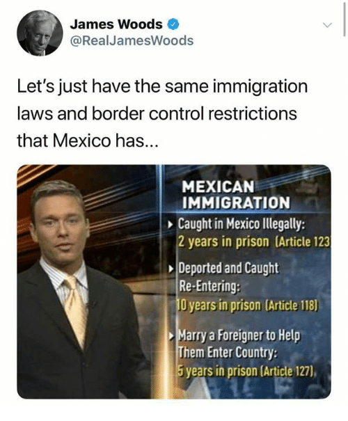 Memes, Control, and Prison: James Woods  @Real JamesWoods  Let's just have the same immigration  laws and border control restrictions  that Mexico has...  MEXICAN  IMMIGRATION  Caught in Mexico llegally:  2 years in prison (Article 123  Deported and Caught  Re-Entering:  O years in prison (Article 118)  Marry a Foreigner to Help  Them Enter Country  5 years in prison (Article 127),