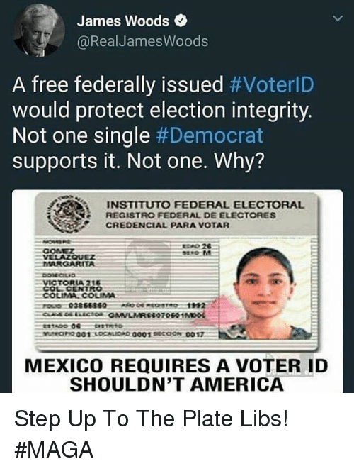 America, Memes, and Free: James Woods  @RealJamesWoods  A free federally issued #VoterlD  would protect election integrity.  Not one single #Democrat  supports it. Not one. Why?  INSTITUTO FEDERAL ELECTORAL  REGISTRO FEDERAL DE ELECTORES  CREDENCIAL PARA VOTAR  CONEZ  VELAZQUEZ  MARGARITA  MEXICO REQUIRES A VOTER ID  SHOULDN'T AMERICA Step Up To The Plate Libs!  #MAGA