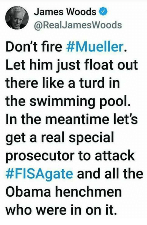 Fire, Memes, and Obama: James Woods  @RealJamesWoods  Don't fire #Mueller.  Let him just float out  there like a turd in  the swimming pool  In the meantime let's  get a real special  prosecutor to attaclk  #FISAgate and all the  Obama henchmen  who were in on it.