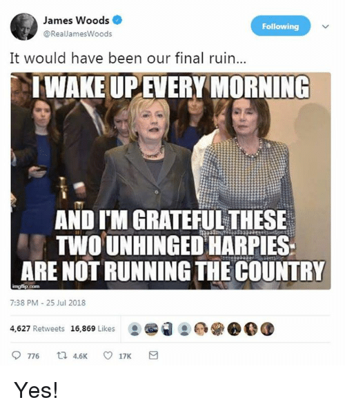 Memes, James Woods, and Running: James Woods  @RealJamesWoods  Following  It would have been our final ruin...  IWAKE UPEVERY MORNING  AND I'M GRATEFUL THESE  TWOUNHINGED HARPIES  ARE NOT RUNNING THE COUNTRY  7:38 PM-25 Jul 2018  4,627 Retweets 16,869 Likes Yes!