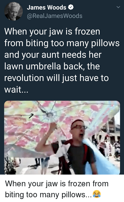 Frozen, Revolution, and James Woods: James Woods  @RealJamesWoods  When your jaw is frozen  from biting too many pillows  and your aunt needs her  lawn umbrella back, the  revolution will just have to  wait...