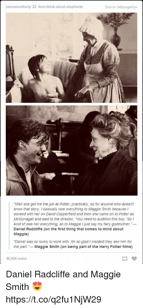 "Daniel Radcliffe, Harry Potter, and Memes: jamesmoritartydont-think-about-elephants  Source: ladysugarlips  ""Well she got me the job at Potter, practically, so for anyone who doesnt  know that story, I basically owe everything to Maggie Smith because I  worked with her on David Copperfield and then she came on to Potter as  McGonagall and said to the director, You need to audition this boy. So l  kind of owe her everything, so to Maggie I just say my fairy godmother.""-  Daniel Radcliffe (on the first thing that comes to mind about  Maggie)  ""Daniel was so lovely to work with. Im so glad I insisted they see him for  the part.- Maggie Smith (on being part of the Harry Potter films)  46,054 notes Daniel Radcliffe and Maggie Smith 😍 https://t.co/q2fu1NjW29"