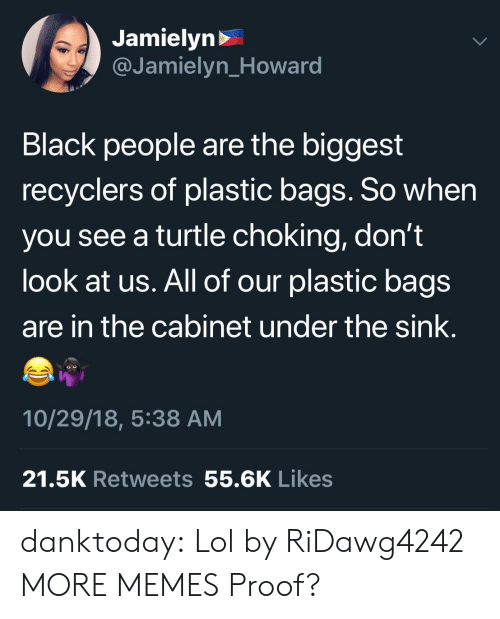 Dank, Lol, and Memes: Jamielyn>  @Jamielyn_Howard  Black people are the biggest  recyclers of plastic bags. So when  you see a turtle choking, don't  look at us. All of our plastic bags  are in the cabinet under the sink.  10/29/18, 5:38 AM  21.5K Retweets 55.6K Likes danktoday:  Lol by RiDawg4242 MORE MEMES  Proof?