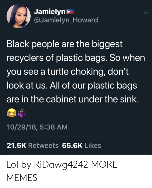 Dank, Lol, and Memes: Jamielyn>  @Jamielyn_Howard  Black people are the biggest  recyclers of plastic bags. So when  you see a turtle choking, don't  look at us. All of our plastic bags  are in the cabinet under the sink.  10/29/18, 5:38 AM  21.5K Retweets 55.6K Likes Lol by RiDawg4242 MORE MEMES