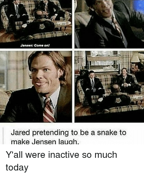 Memes, Jared, and Snake: Janeen Como onl  Jared pretending to be a snake to  make Jensen laugh Y'all were inactive so much today