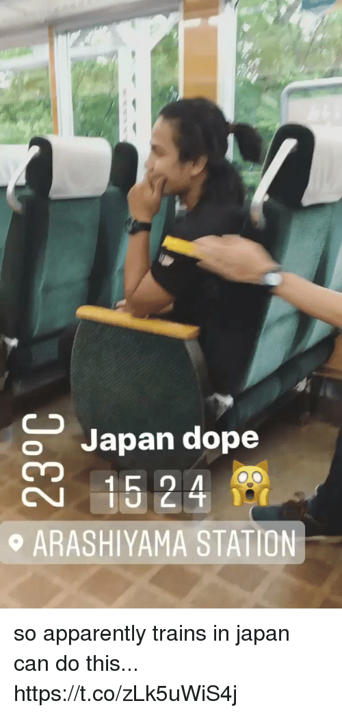 Apparently, Dope, and Funny: Japan dope  ARASHIYAMA STATION so apparently trains in japan can do this... https://t.co/zLk5uWiS4j