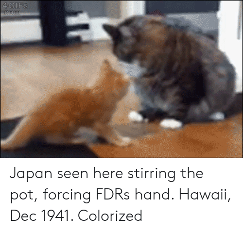 Hawaii, Japan, and Fdr: Japan seen here stirring the pot, forcing FDRs hand. Hawaii, Dec 1941. Colorized