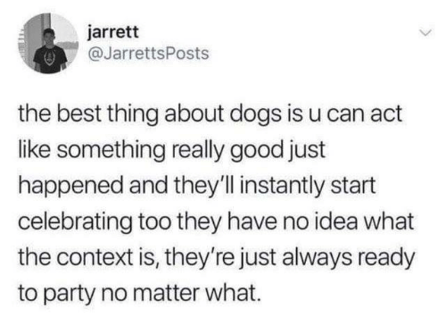 Dank, Dogs, and Party: jarrett  @JarrettsPosts  the best thing about dogs is u can act  like something really good just  happened and they'll instantly start  celebrating too they have no idea what  the context is, they're just always ready  to party no matter what.