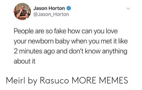 Dank, Fake, and Love: Jason Horton  @Jason_Horton  People are so fake how can you love  your newborn baby when you met it like  2 minutes ago and don't know anything  about it Meirl by Rasuco MORE MEMES