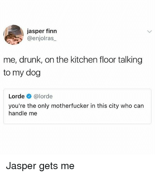 Drunk, Finn, and Lorde: jasper finn  @enjolras_  me, drunk, on the kitchen floor talking  to my dog  Lorde @lorde  you're the only motherfucker in this city who can  handle me Jasper gets me