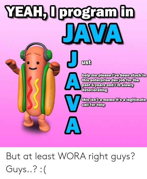 Meme, Java, and This: JAVA  ust  helpme please lrwebeen stuck in  thisenterprisedevjobtorthe  past5 yearsand I'm slowly  deterioratingS  this isnta meme it salegitimate  ca But at least WORA right guys? Guys..? :(