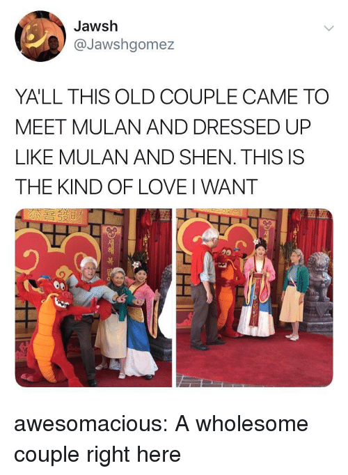 Love, Mulan, and Tumblr: Jawsh  @Jawshgomez  YALL THIS OLD COUPLE CAME TO  MEET MULAN AND DRESSED UP  LIKE MULAN AND SHEN. THIS IS  THE KIND OF LOVE I WANT  つ  )  복 awesomacious:  A wholesome couple right here