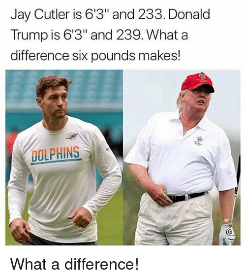 "Donald Trump, Gym, and Jay: Jay Cutler is 6'3"" and 233. Donald  Trump is 6'3"" and 239. What a  difference six pounds makes!  DOLPHINS What a difference!"