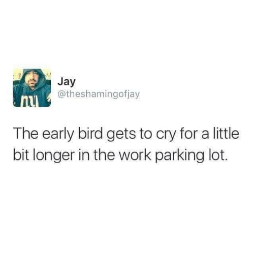 Funny, Jay, and Tumblr: Jay  @theshamingofjay  The early bird gets to cry for a little  bit longer in the work parking lot.