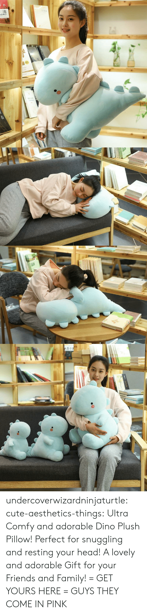 Cute, Family, and Friends: JD  三论  laint  orld  TNAR  ww.e undercoverwizardninjaturtle: cute-aesthetics-things:   Ultra Comfy and adorable Dino Plush Pillow! Perfect for snuggling and resting your head! A lovely and adorable Gift for your Friends and Family! = GET YOURS HERE =   GUYS THEY COME IN PINK