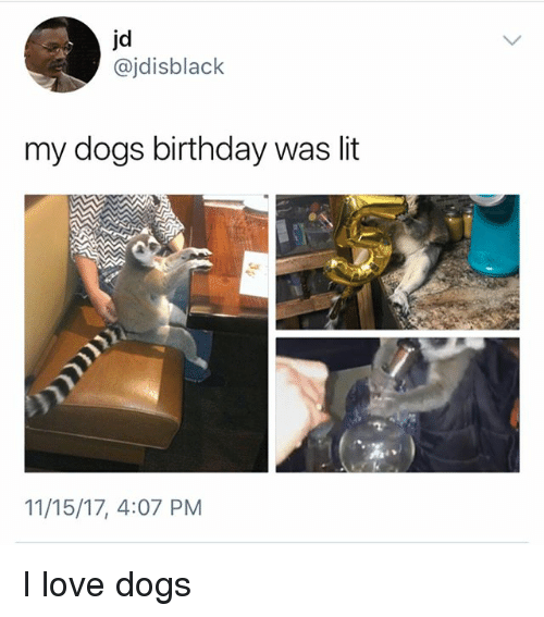 Birthday, Dogs, and Lit: jd  @jdisblack  my dogs birthday was lit  11/15/17, 4:07 PM I love dogs
