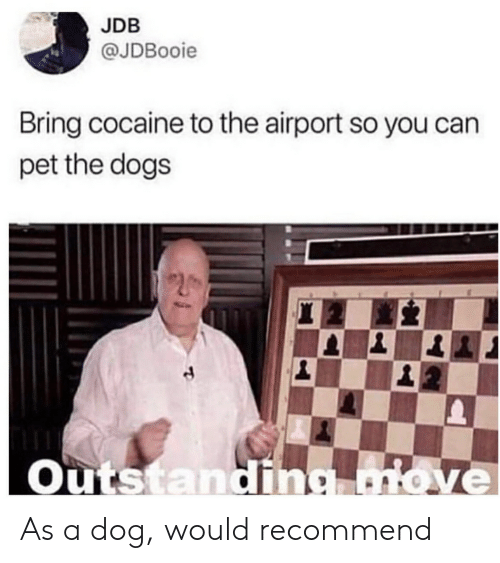 Dogs, Cocaine, and Terrible Facebook: JDB  @JDBooie  Bring cocaine to the airport so you can  pet the dogs  Outstandin As a dog, would recommend
