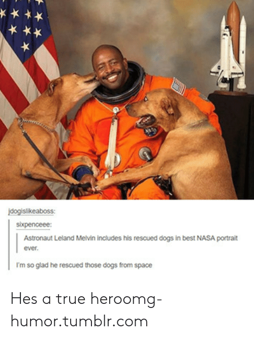 Dogs, Nasa, and Omg: jdogislikeaboss:  sixpenceee  Astronaut Leland Melvin includes his rescued dogs in best NASA portrait  ever  I'm so glad he rescued those dogs from space Hes a true heroomg-humor.tumblr.com