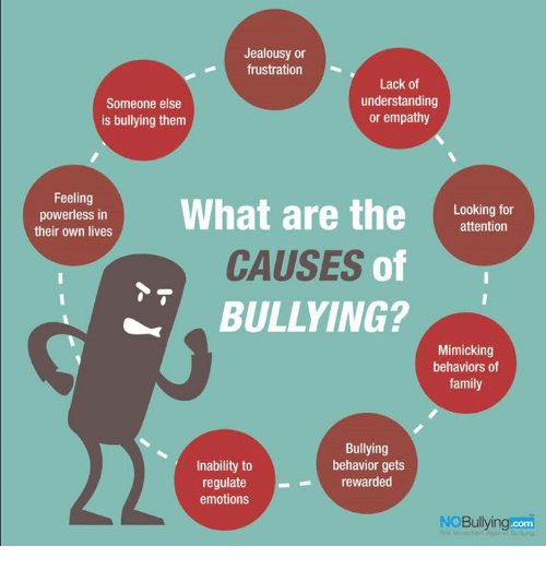 what causes bullies to bully