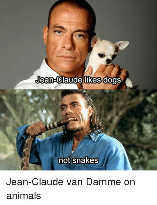Animals, Dogs, and Jean-Claude Van Damme: Jean-Claude likes dogs  not snakes