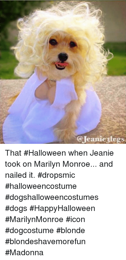 59d9154a6 Dogs, Halloween, and Madonna: @Jeaniezlegs That #Halloween when Jeanie took  on