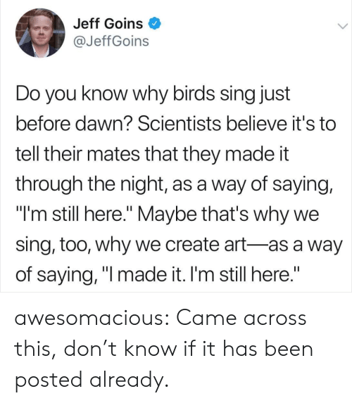 """Tumblr, Birds, and Blog: Jeff Goins O  @JeffGoins  Do you know why birds sing just  before dawn? Scientists believe it's to  tell their mates that they made it  through the night, as a way of saying,  """"I'm still here."""" Maybe that's why we  sing, too, why we create art-as a way  of saying, """"l made it. I'm still here."""" awesomacious:  Came across this, don't know if it has been posted already."""