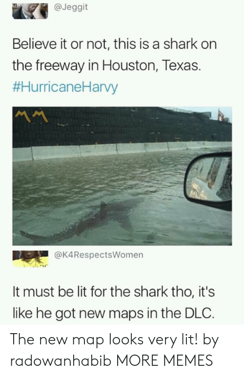 Dank, Lit, and Memes: @Jeggit  Believe it or not, this is a shark on  the freeway in Houston, Texas.  #HurricaneHarvy  서서  @K4RespectsWomen  It must be lit for the shark tho, it's  like he got new maps in the DLC. The new map looks very lit! by radowanhabib MORE MEMES