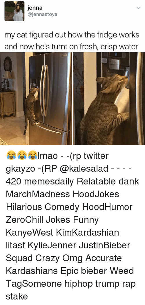 Memes, 🤖, and Fridge: Jenna  ajennastoya  my cat figured out how the fridge works  and now he's turnt on fresh, crisp water  SAMSUNG 😂😂😂lmao - -(rp twitter gkayzo -(RP @kalesalad - - - - 420 memesdaily Relatable dank MarchMadness HoodJokes Hilarious Comedy HoodHumor ZeroChill Jokes Funny KanyeWest KimKardashian litasf KylieJenner JustinBieber Squad Crazy Omg Accurate Kardashians Epic bieber Weed TagSomeone hiphop trump rap stake