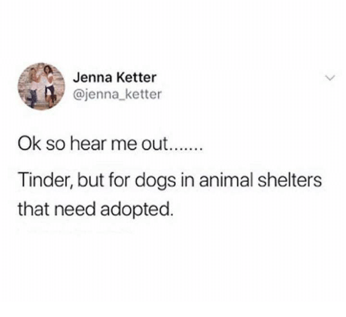 Dogs, Tinder, and Animal: Jenna Ketter  @jenna_ ketter  Ok so hear me out  Tinder, but for dogs in animal shelters  that need adopted.
