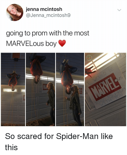 Memes, Spider, and SpiderMan: jenna mcintosh  @Jenna_mcintosh9  going to prom with the most  MARVELOUS boy So scared for Spider-Man like this