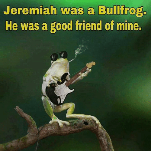 Memes, Good, and 🤖: Jeremiah was a Bullfrog.  He was a good friend of mine.