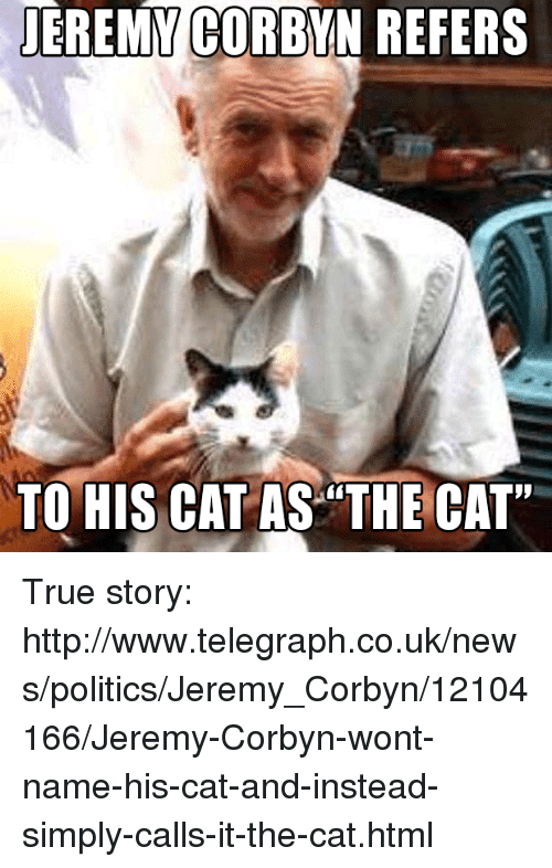 "Memes, News, and True: JEREMY  CORBYN REFERS  TO HIS CAT AS ""THE CAT"" True story: http://www.telegraph.co.uk/news/politics/Jeremy_Corbyn/12104166/Jeremy-Corbyn-wont-name-his-cat-and-instead-simply-calls-it-the-cat.html"