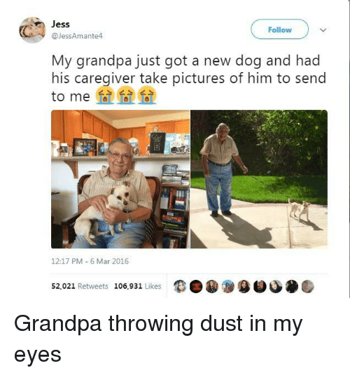 Grandpa, Pictures, and Got: Jess  @JessAmante4  Follow  My grandpa just got a new dog and had  his caregiver take pictures of him to send  to me  12:17 PM 6 Mar 2016  52,021 Retweets 106,931 Likes  9目 Grandpa throwing dust in my eyes