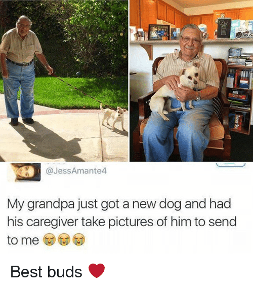 jessamante4 my grandpa just got a new dog and had 27269080 ✅ 25 best memes about grandpa grandpa memes,Grandpa Memes