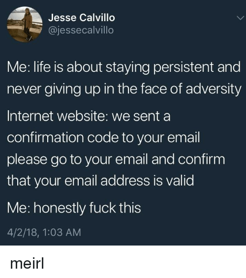 Internet, Life, and Email: Jesse Calvillo  @jessecalvillo  Me: life is about staying persistent and  never giving up in the face of adversity  Internet website: we senta  confirmation code to your email  please go to your email and confirm  that your email address is valid  Me: honestly fuck this  4/2/18, 1:03 AM meirl