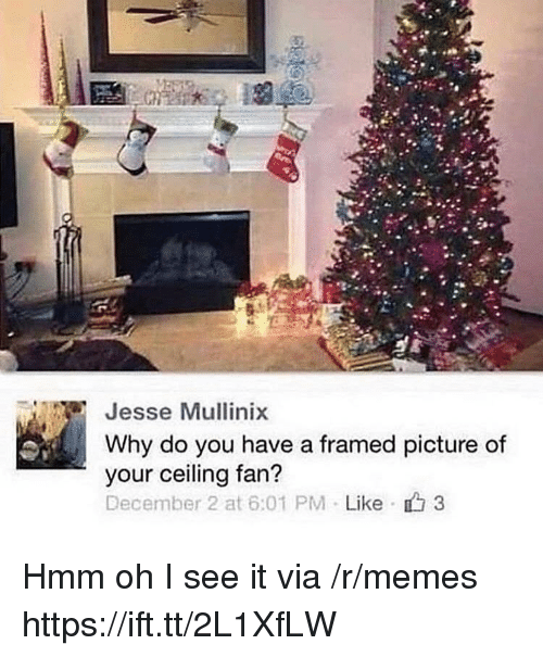 Memes, December 2, and Jesse: Jesse Mullinix  Why do you have a framed picture of  your ceiling fan?  December 2 at 6:01 PM . Like 3 Hmm oh I see it via /r/memes https://ift.tt/2L1XfLW