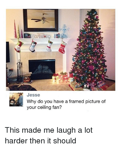 Jesse Why Do You Have A Framed Picture Of Your Ceiling Fan This