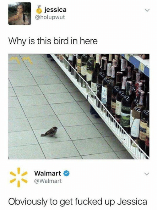 Dank, Walmart, and 🤖: jessica  @holupwut  Why is this bird in here  Walmart  @Walmart  Obviously to get fucked up Jessica