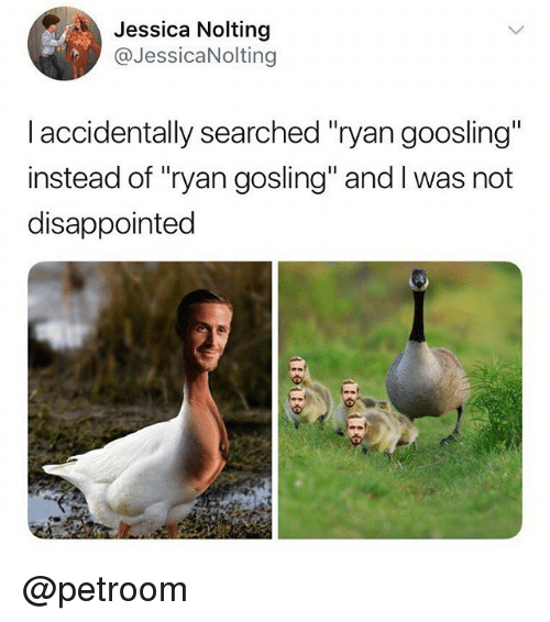 "Disappointed, Funny, and Ryan Gosling: Jessica Nolting  @JessicaNolting  I accidentally searched ""ryan goosling""  instead of ""ryan gosling"" and I was not  disappointed @petroom"