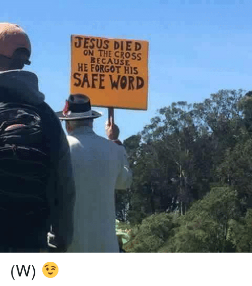 Memes, 🤖, and The Cross: JESUS DIED  THE CROSS.  BECAUSE  HE HIS  SAFE WORD (W) 😉