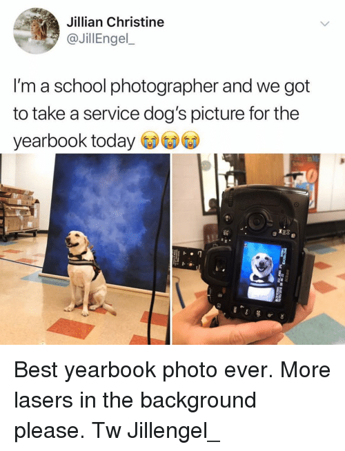 Dogs, Memes, and School: Jillian Christine  @JillEngel  I'm a school photographer and we got  to take a service dog's picture for the  yearbook today Best yearbook photo ever. More lasers in the background please. Tw Jillengel_