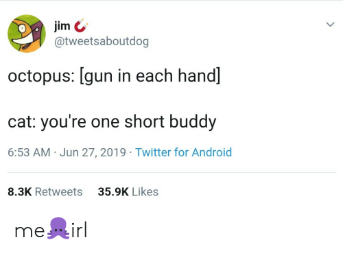 Android, Twitter, and Octopus: jim  @tweetsaboutdog  octopus: [gun in each hand]  cat: you're one short buddy  6:53 AM Jun 27, 2019 Twitter for Android  35.9K Likes  8.3K Retweets me🐙irl
