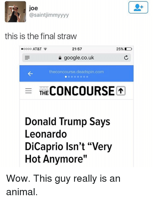 "Animals, Anime, and Donald Trump: Joe  asaintjimmyyyy  this is the final straw  21:57  25%  AT&T  google.co.uk  the concourse deadspin.com  E THE  CONCOURSE  Donald Trump Says  Leonardo  DiCaprio Isn't ""Very  Hot Anymore"" Wow. This guy really is an animal."
