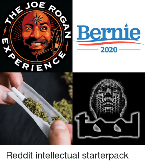 Best Antivirus Reddit 2020 &JOE Bernie 2020 eRIEN | Reddit Meme on ME.ME