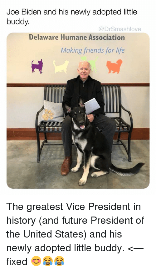 Friends, Future, and Joe Biden: Joe Biden and his newly adopted little  buddy.  @DrSmashlove  Delaware Humane Association  Making friends for life The greatest Vice President in history (and future President of the United States) and his newly adopted little buddy. <— fixed 😊😂😂