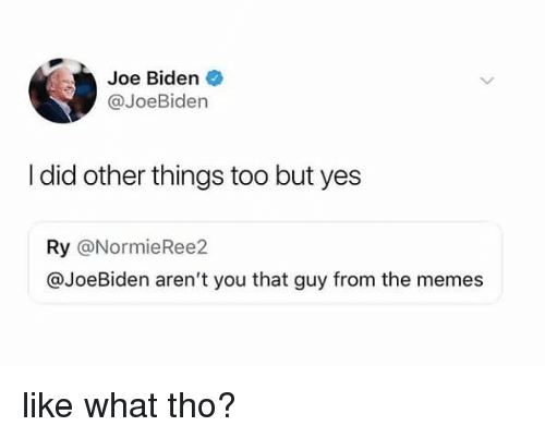 Joe Biden, Memes, and Arent You: Joe Biden  @JoeBiden  I did other things too but yes  Ry @NormieRee2  @JoeBiden aren't you that guy from the memes like what tho?