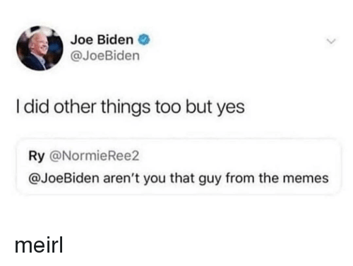 Joe Biden, Memes, and MeIRL: Joe Biden  @JoeBiden  I did other things too but yes  Ry @NormieRee2  @JoeBiden aren't you that guy from the memes meirl