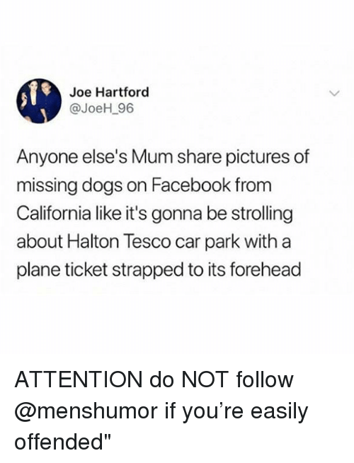 Dogs, Facebook, and Memes: Joe Hartford  @JoeH_96  Anyone else's Mum share pictures of  missing dogs on Facebook from  California like it's gonna be strolling  about Halton Tesco car park with a  plane ticket strapped to its forehead ATTENTION do NOT follow @menshumor if you're easily offended""