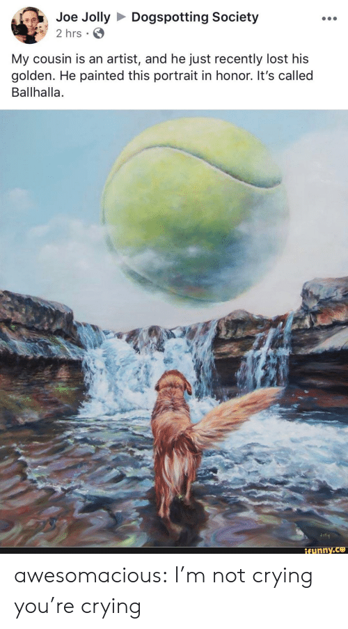Crying, Not Crying, and Tumblr: Joe JollyDogspotting Society  2 hrs  My cousin is an artist, and he just recently lost his  golden. He painted this portrait in honor. It's called  Ballhalla.  ifunny awesomacious:  I'm not crying you're crying